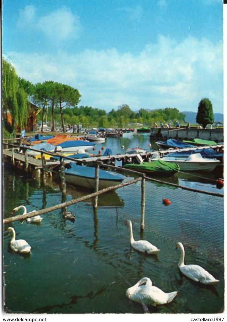 TORRE DEL LAGO PUCCINI (Viareggio) - Lago Dei Cigni E Darsena Motobarche - Italia