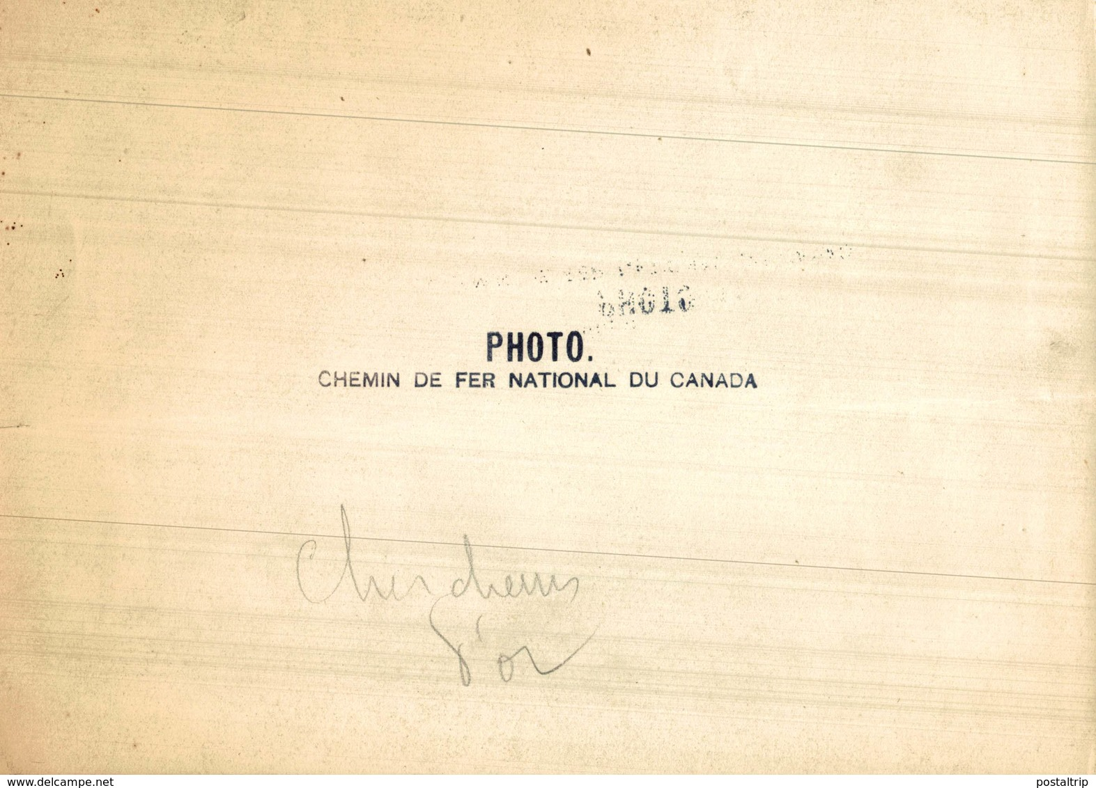 CANADIAN  PHOTO CHEMIN DE FER NATIONAL DU CANADA PACIFIC RAILWAY CHIENS DOGS  Canada   Fonds Victor FORBIN (1864-1947) - Lugares