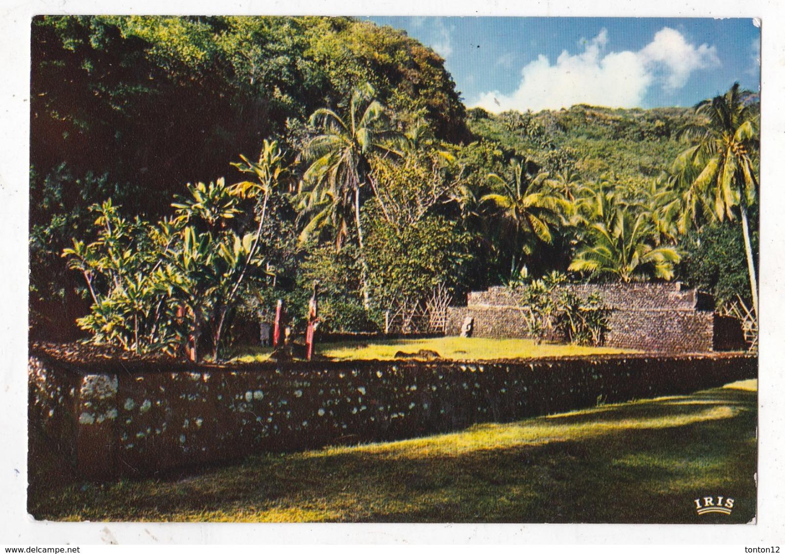 Carte Postale Tahiti Le Marché D' Arahurahu - Polynésie Française