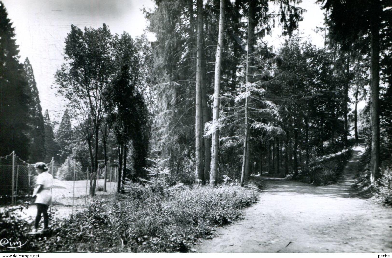 N°72373 -cpsm Chateauneuf Les Bains -un Coin Du Parc Thermal- - Autres Communes