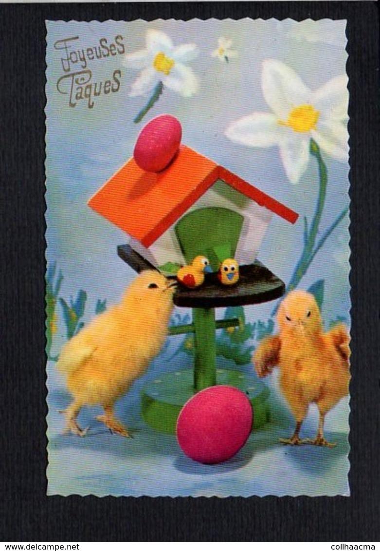 Fête Voeux  / Joyeuses,Heureuses Pâques / Poussins,oeufs - Pâques