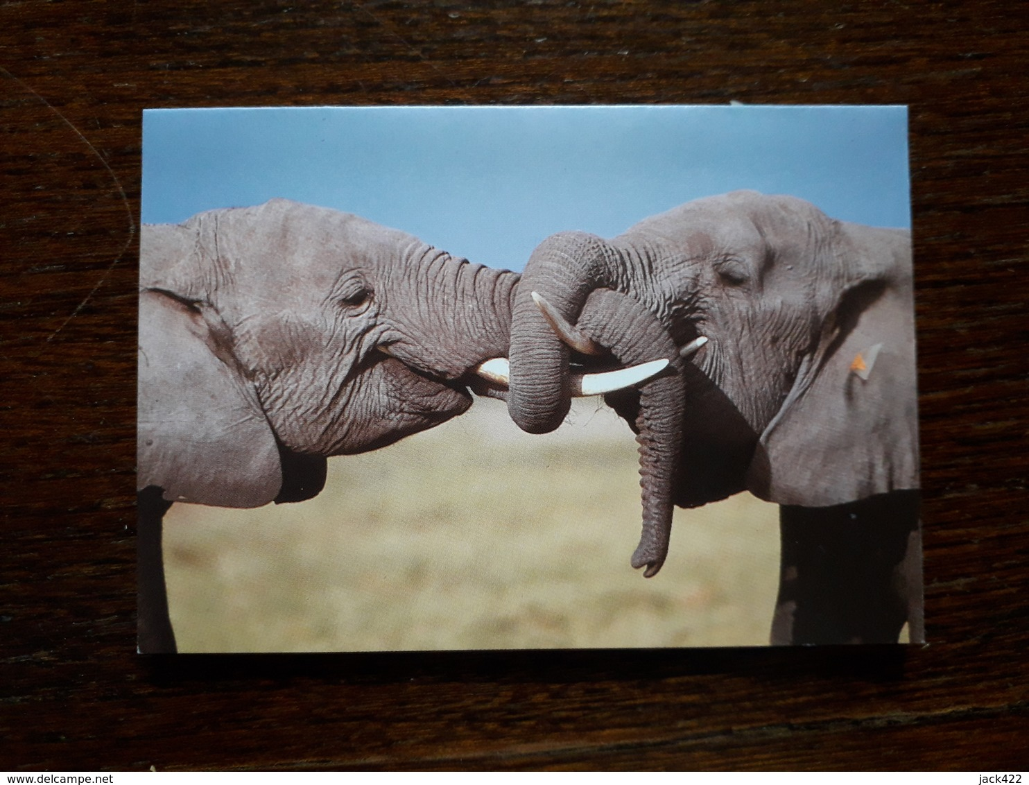 L20/18 Mini Calendrier Publicitaire. 2001. Elephants.Chateaubriant. Tabac Presse - Calendars