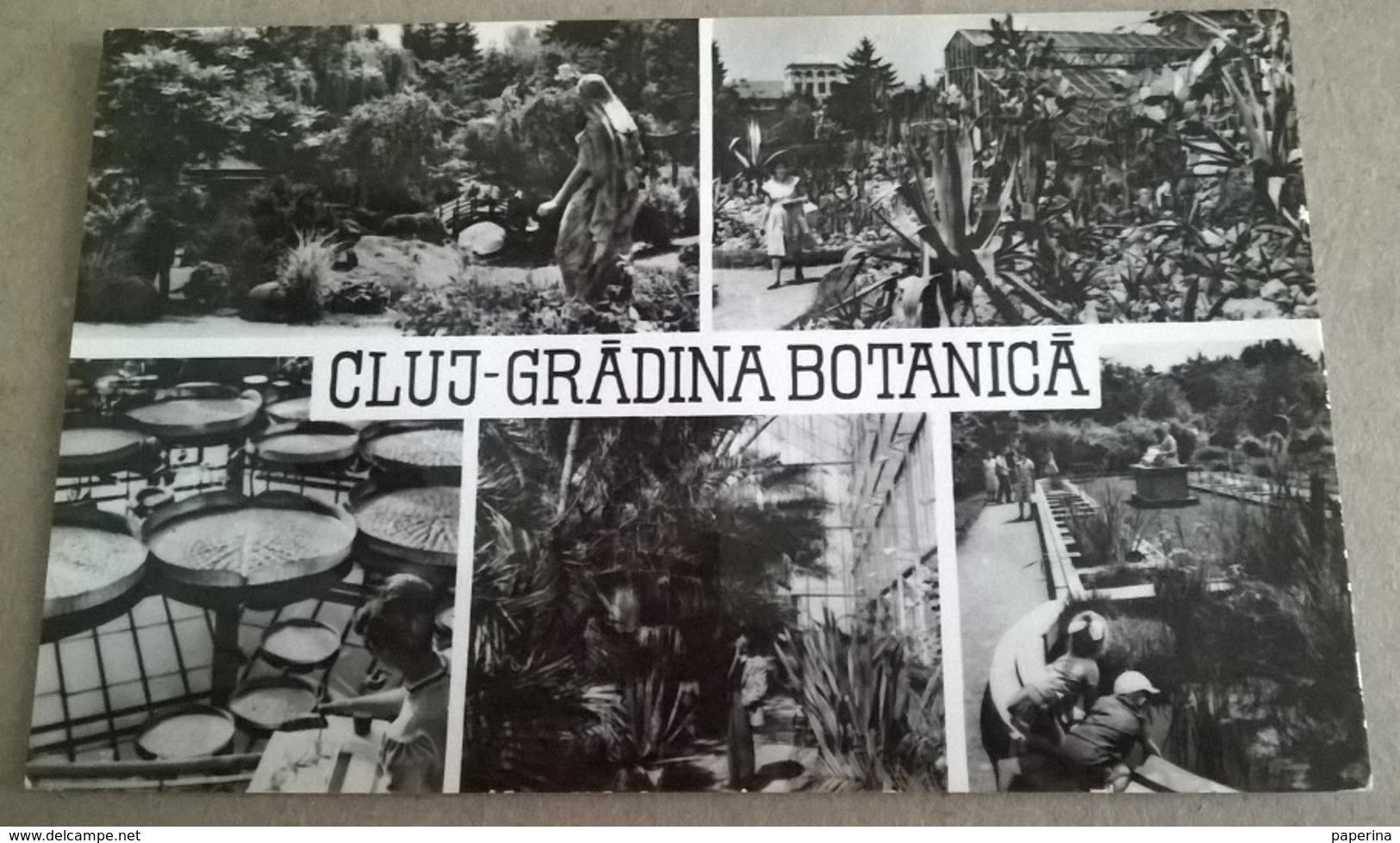 CLUJ GRADINA BOTANICA (194) - Romania