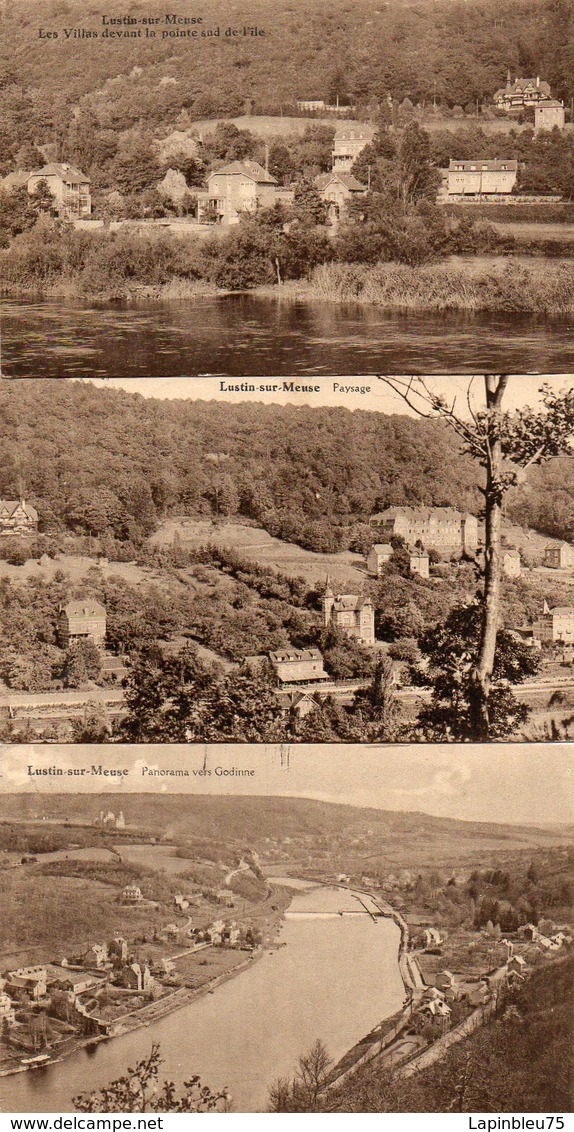 CPA Belgique Namur Lustin Sur Meuse Les Villas Devant La Pointesud De L'île Panorama Vers Godinne - Autres