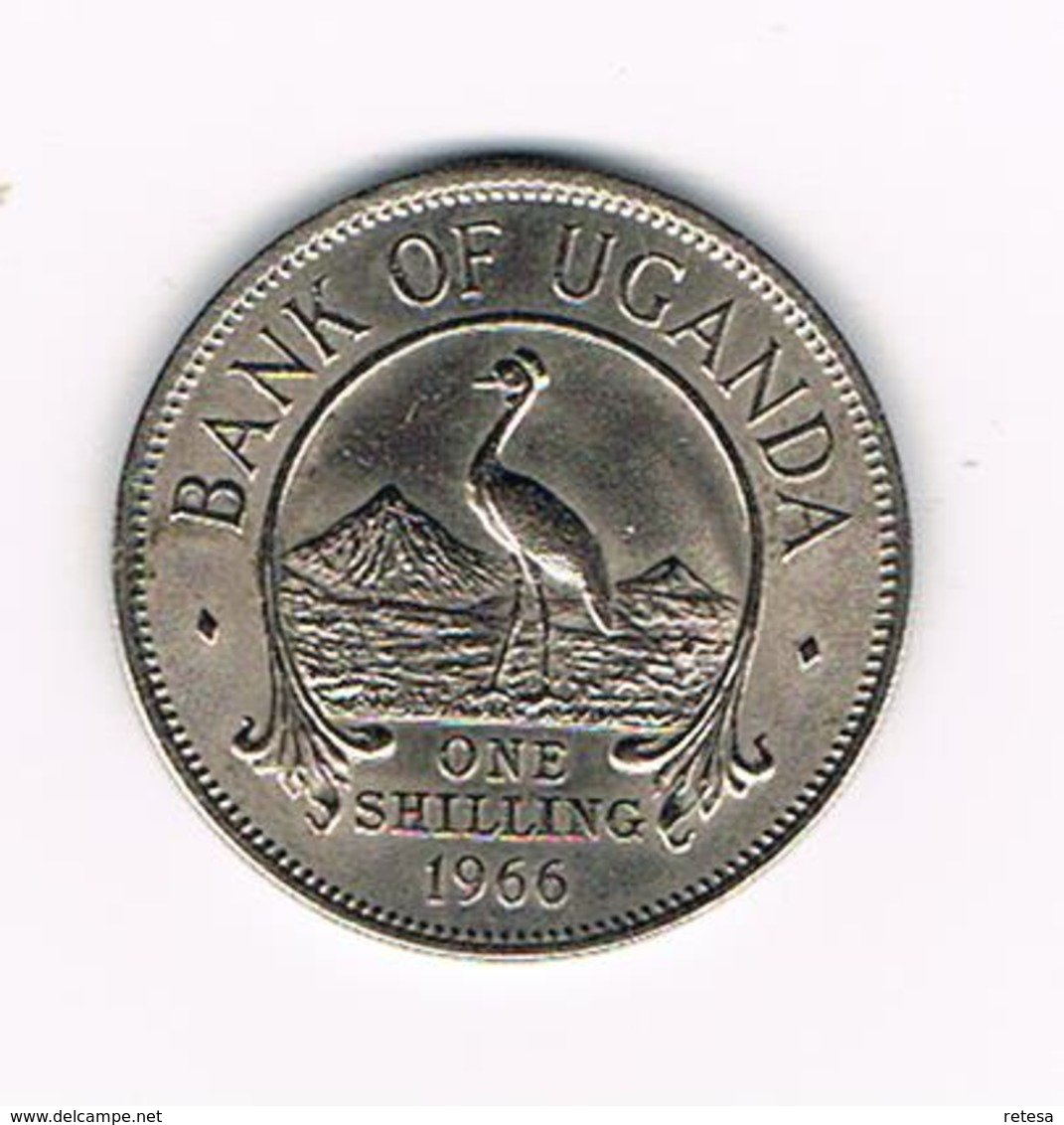 // OEGANDA 1 SHILLING  1966 - Ouganda