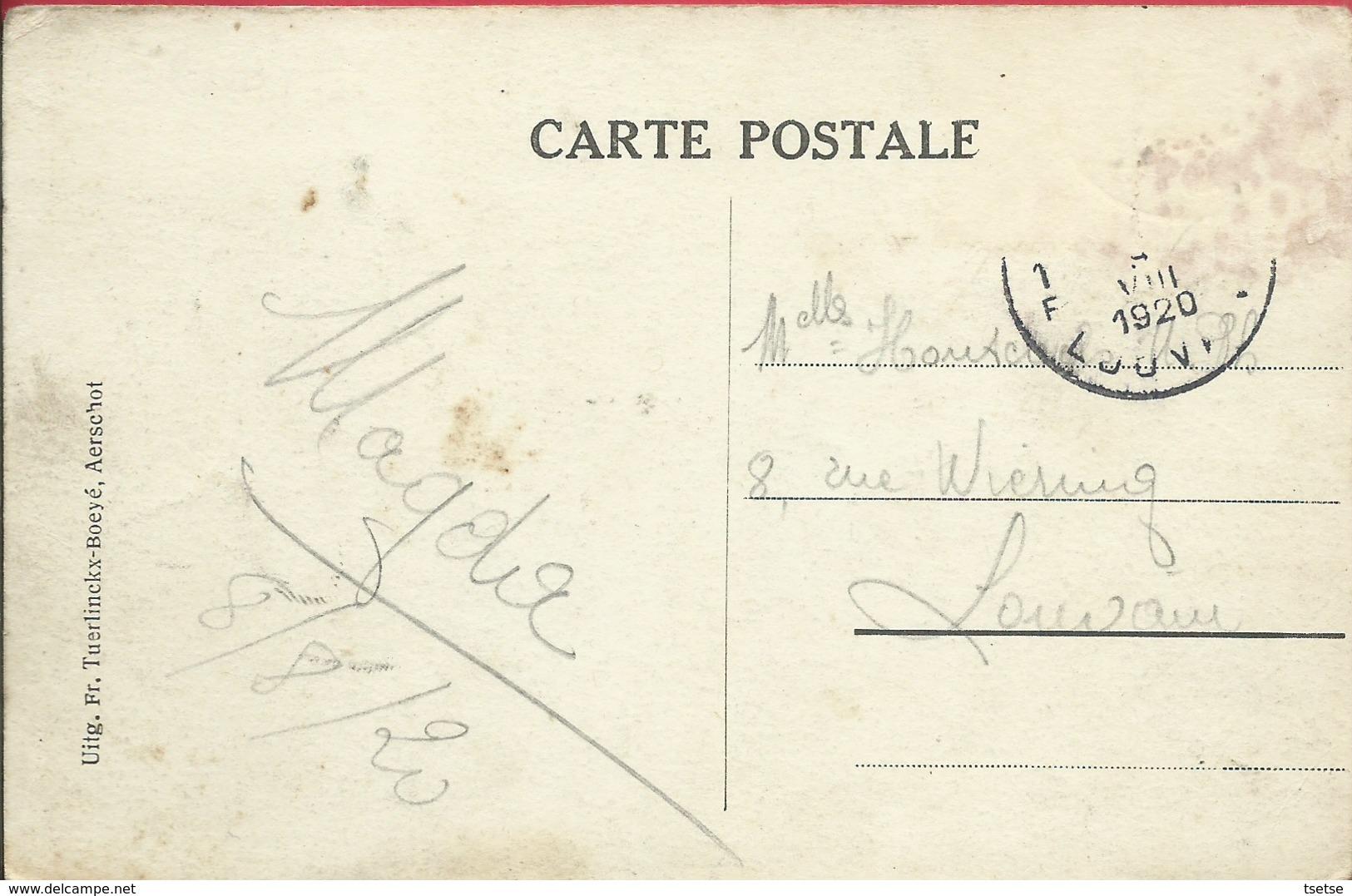 Aarschot - Kasteel Fontaine - 1920 ( Verso Zien ) - Aarschot