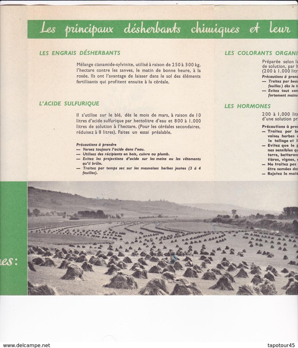(C 3)Dépliant Publicitaire 3 Volets  (Format B 5) - Werbung