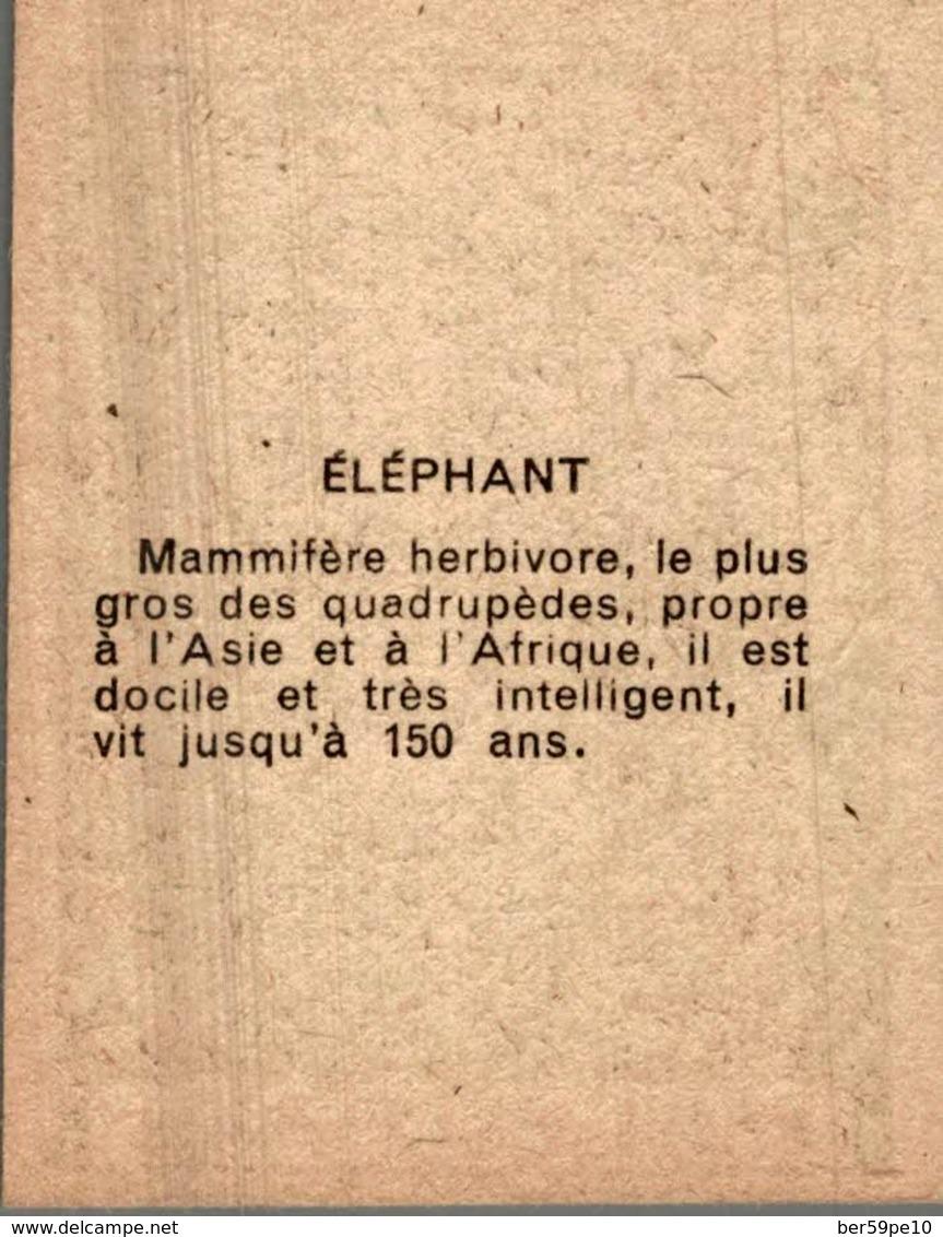CHROMO  L'ELEPHANT - Trade Cards