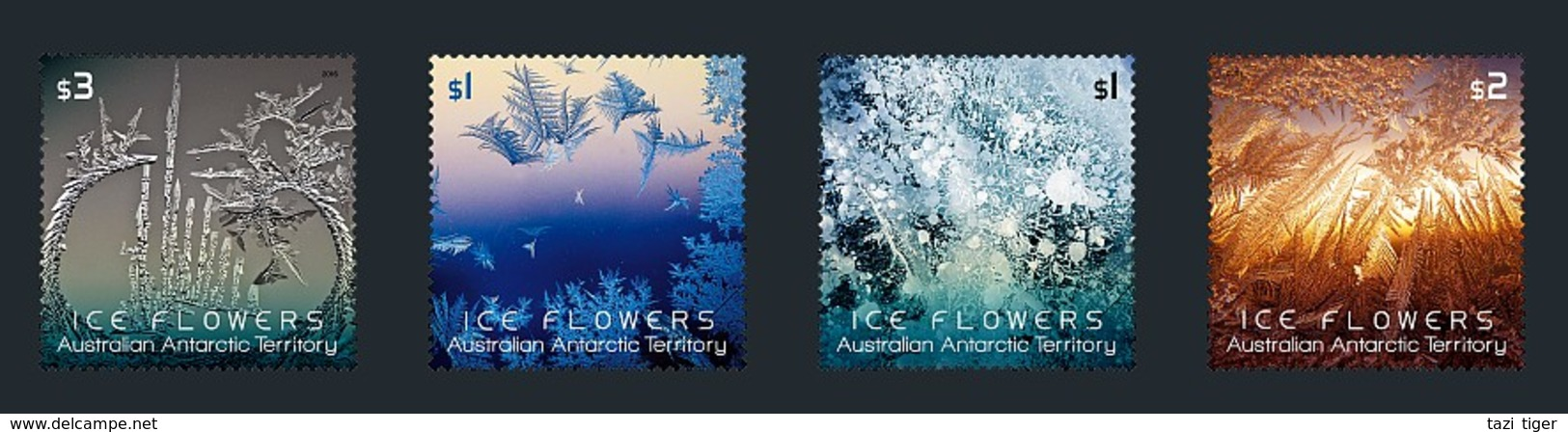 AUSTRALIAN ANTARCTIC TERRITORY (AAT) • 2016 • Ice Flowers - MNH (4) - Unused Stamps