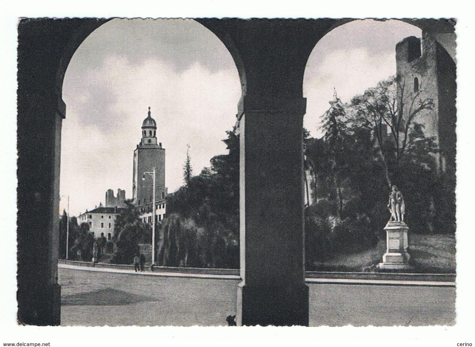 CASTELFRANCO  VENETO:  GIARDINI  PUBBLICI  E  MONUMENTO  A  GIORGIONE  -  FOTO  OPACA  -  FG - Treviso