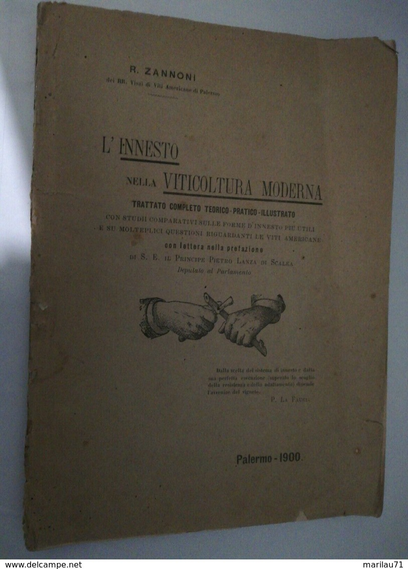 8114 Libro 1900 Innesto Viticoltura Zannoni 220 Pagine Intonso Illustrato - Libri, Riviste, Fumetti