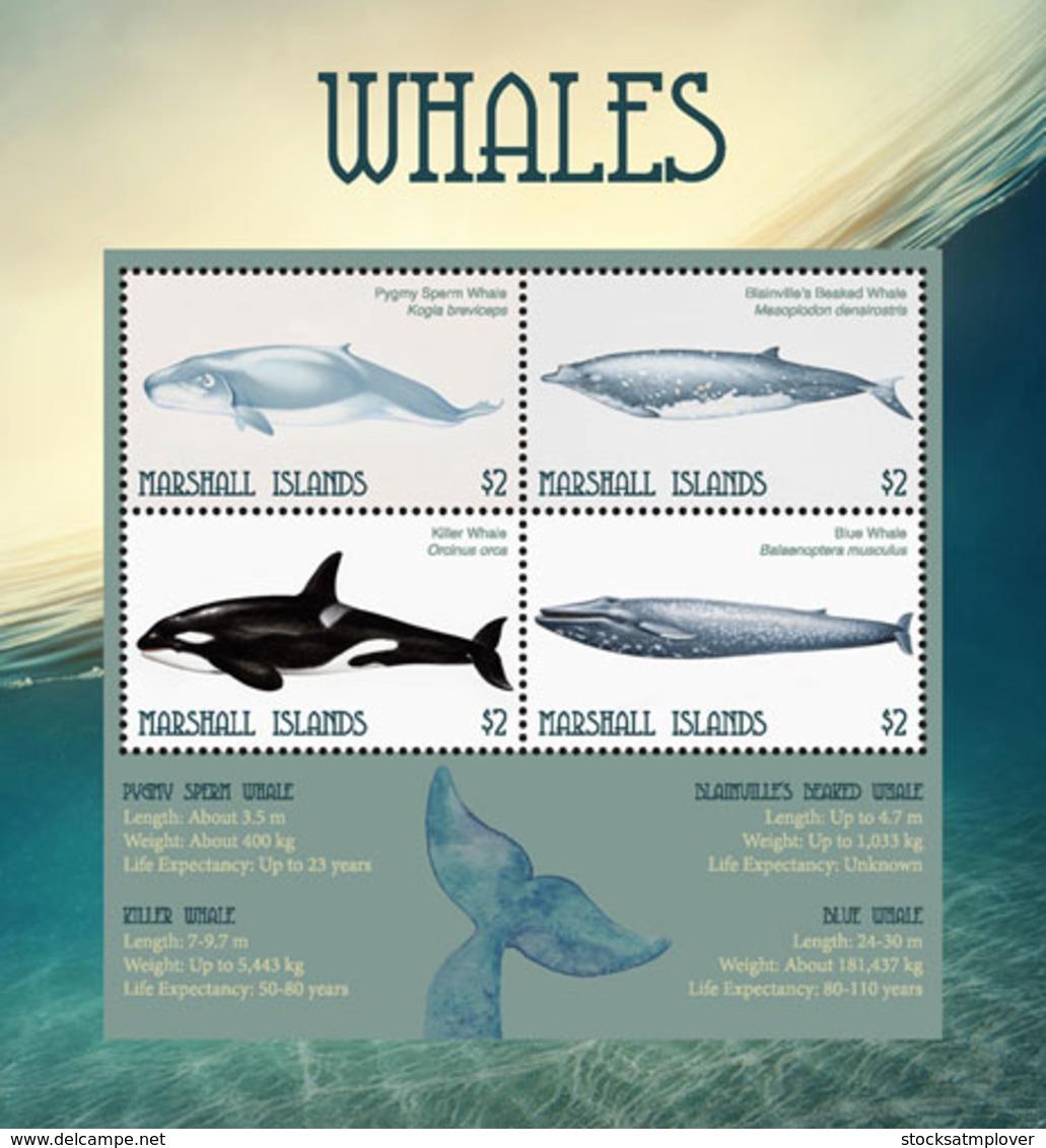 Marshall Islands   2018   Fauna  Whales  I201901 - Marshall Islands