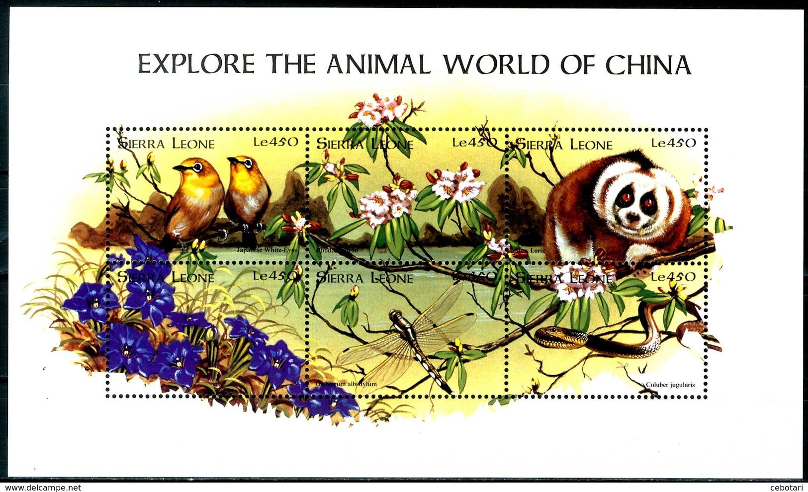 SIERRA LEONE 1998** - Explore The Animal World Of China - Block Di 6 Val. MNH, Come Da Scansione. - Sierra Leone (1961-...)