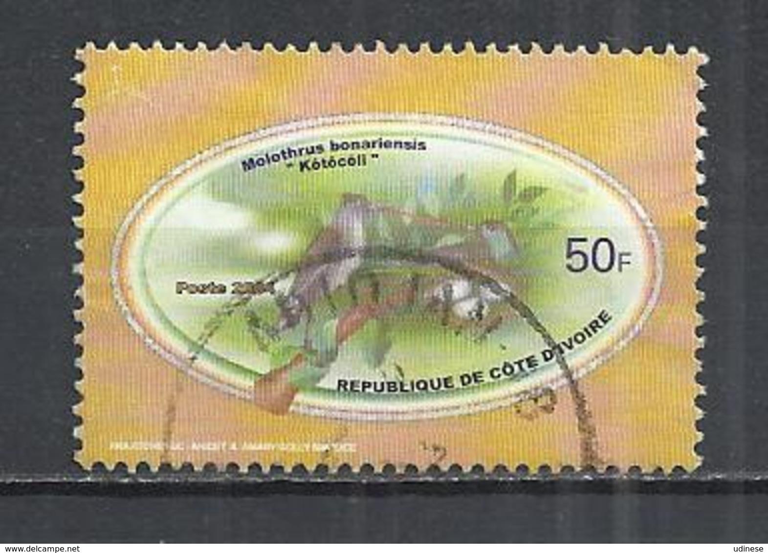 IVORY COAST 2004 - SHINY COWBIRD (MOLOTHRUS BONANENSIS) - POSTALLY USED OBLITERE GESTEMPELT USADO - Ivory Coast (1960-...)