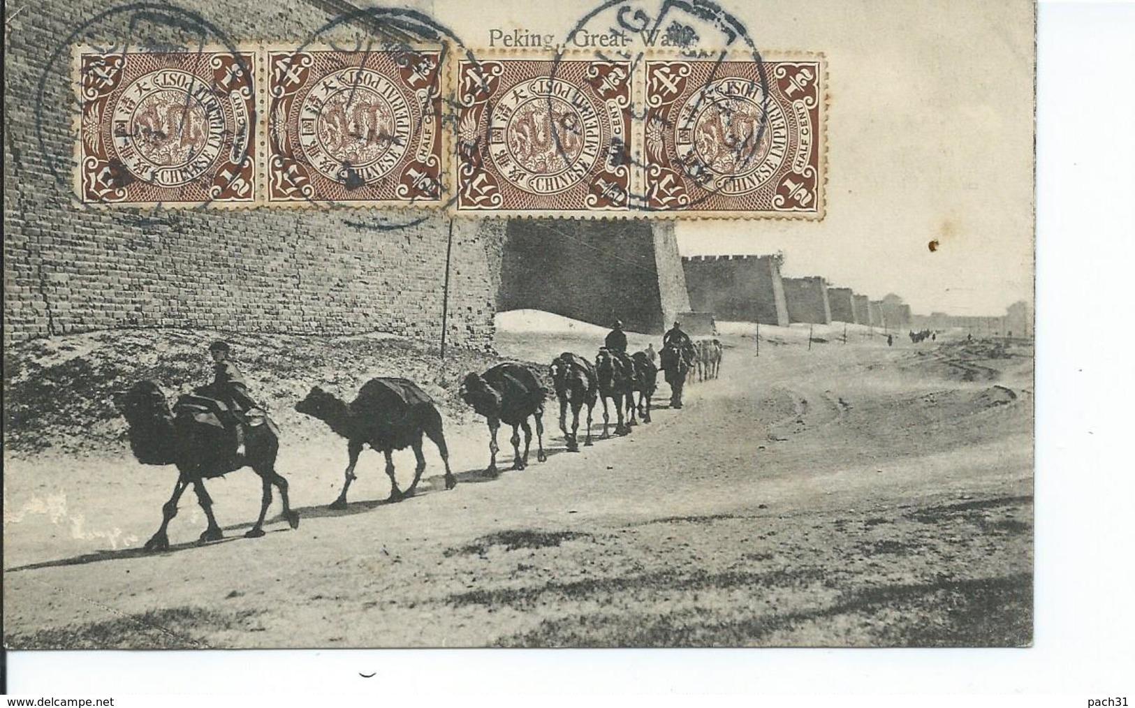 Chine   Caravane De Chameaux   1908 - Chine