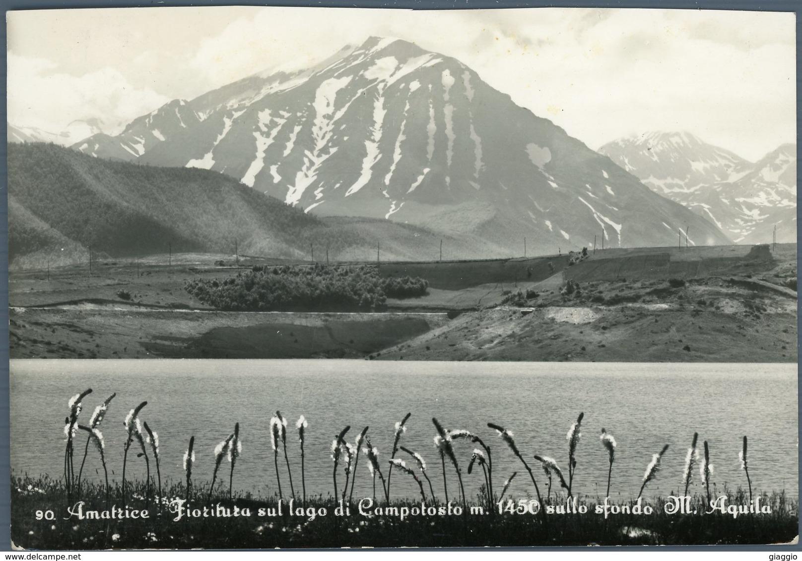 °°° Cartolina N. 32 Amatrice Fioritura Sul Lago Di Campotosto Viaggiata °°° - Rieti