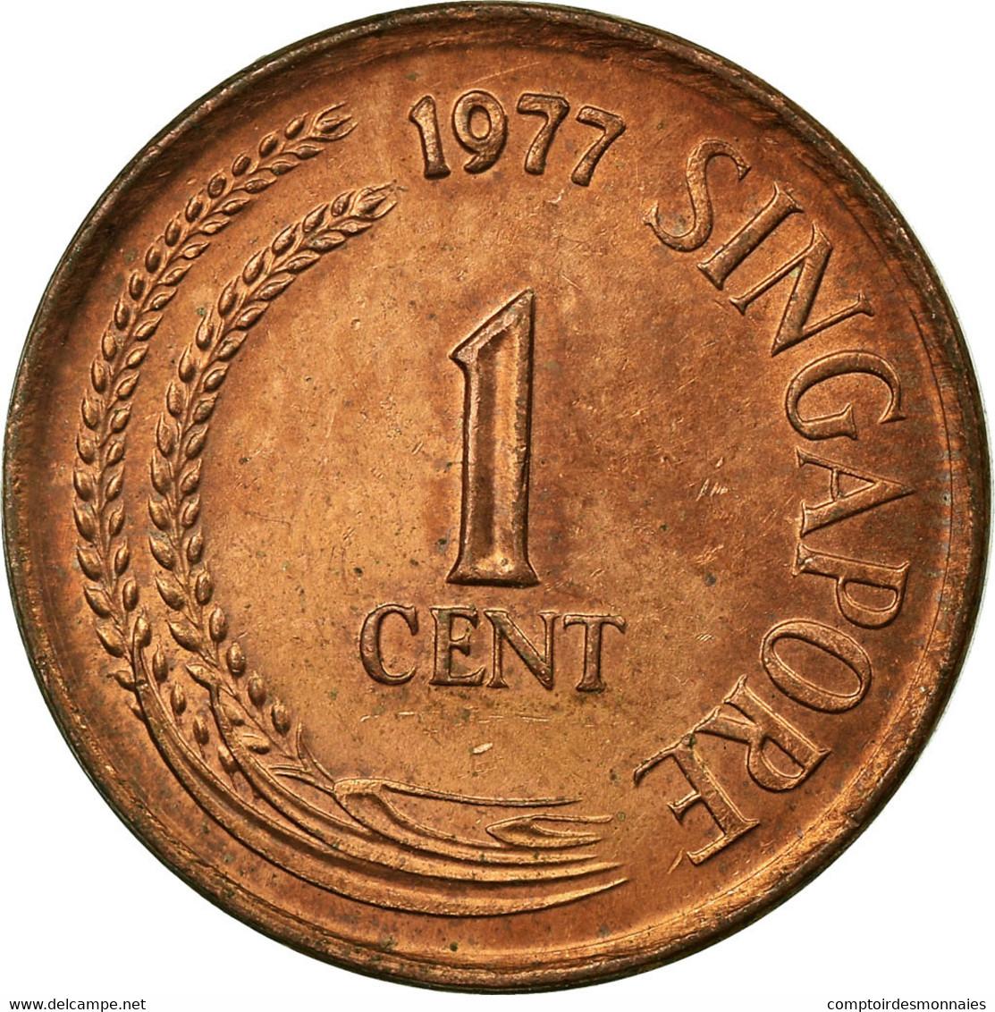 Monnaie, Singapour, Cent, 1977, TTB, Copper Clad Steel, KM:1a - Singapour
