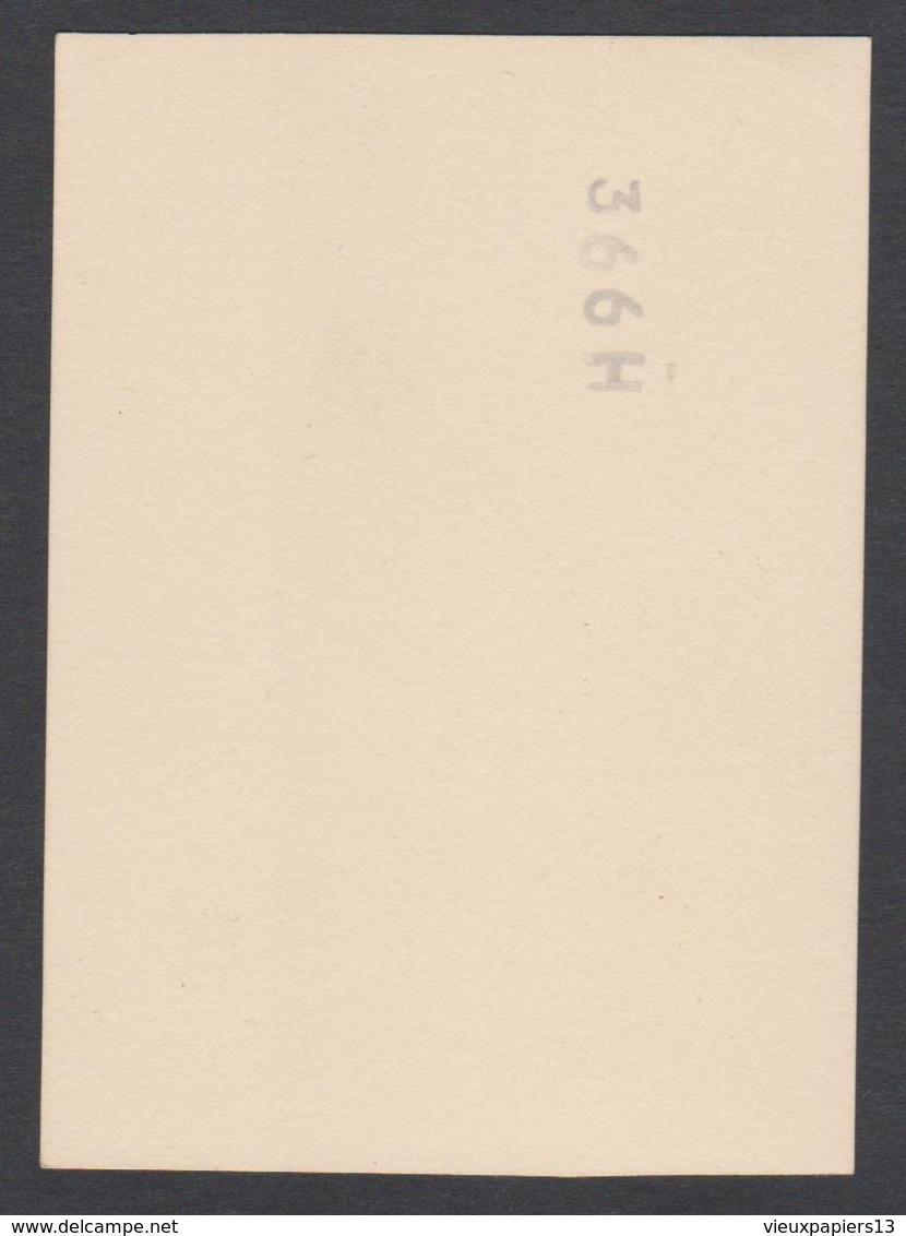Joli Snapshot C.1935 Photo D'un Chien à Coté D'un Chien En Peluche -  9x6 Cm - Other