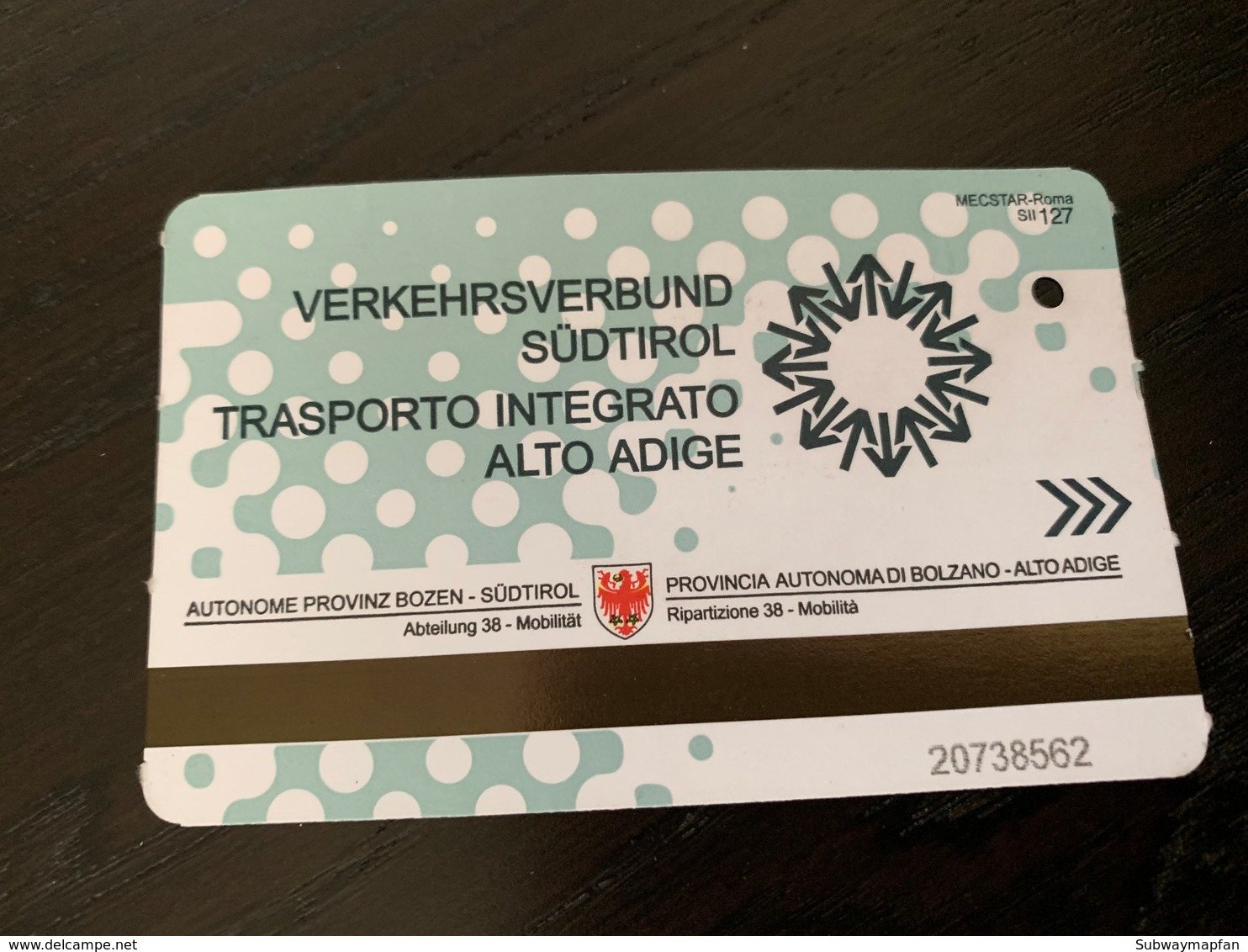 Ticket De Bus Sud Tirol, Autriche, Italie - Europe