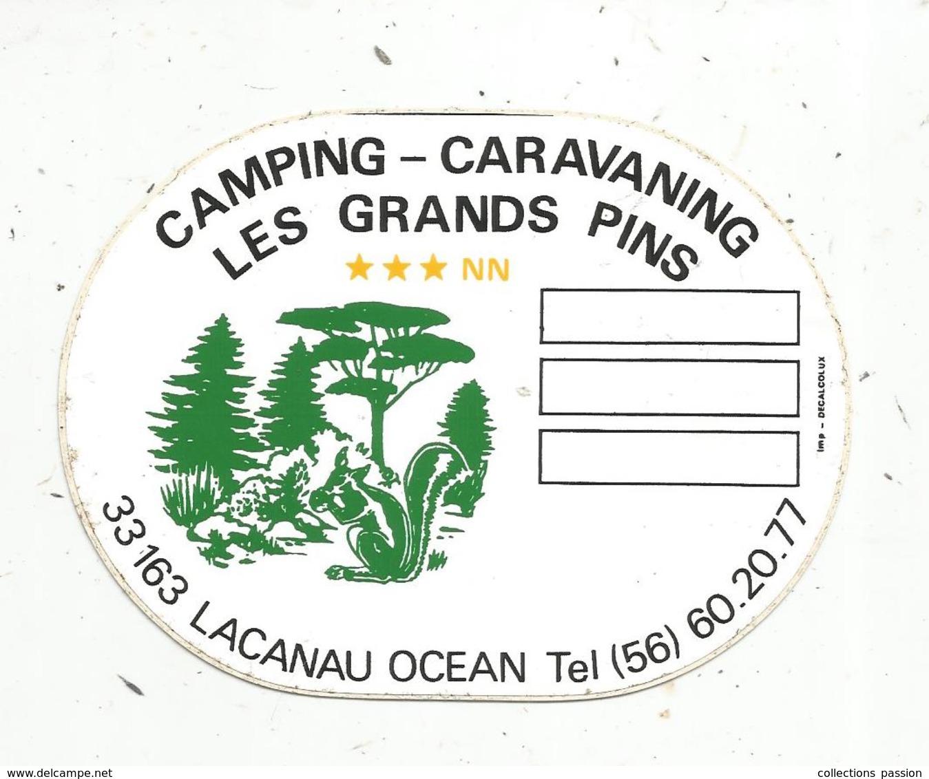 Autocollant , CAMPING - CARAVANING ,  LES GRANDS PINS ,33, LACANAU OCEAN - Autocollants