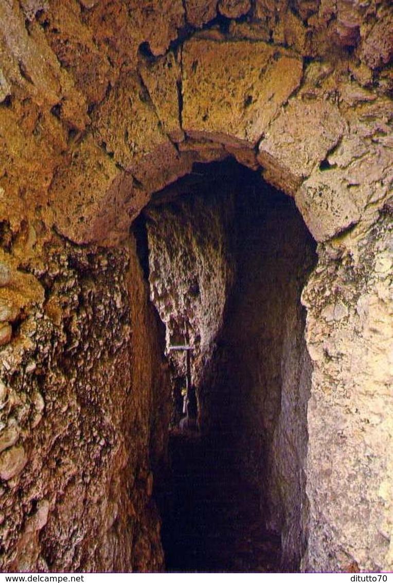 Santuario Francescano Del Presepio Greggio - Rieti - Sacro Speco Di S.francesco - Formato Grande Non Viaggiata – E 12 - Rieti