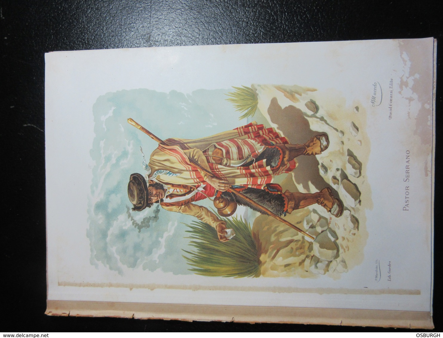 PORTUGAL. COLOUR PRINT. LOCAL COSTUMES. M MACEDO. PASTOR SERANNO. REMOVED FROM A BOOK - Prints & Engravings