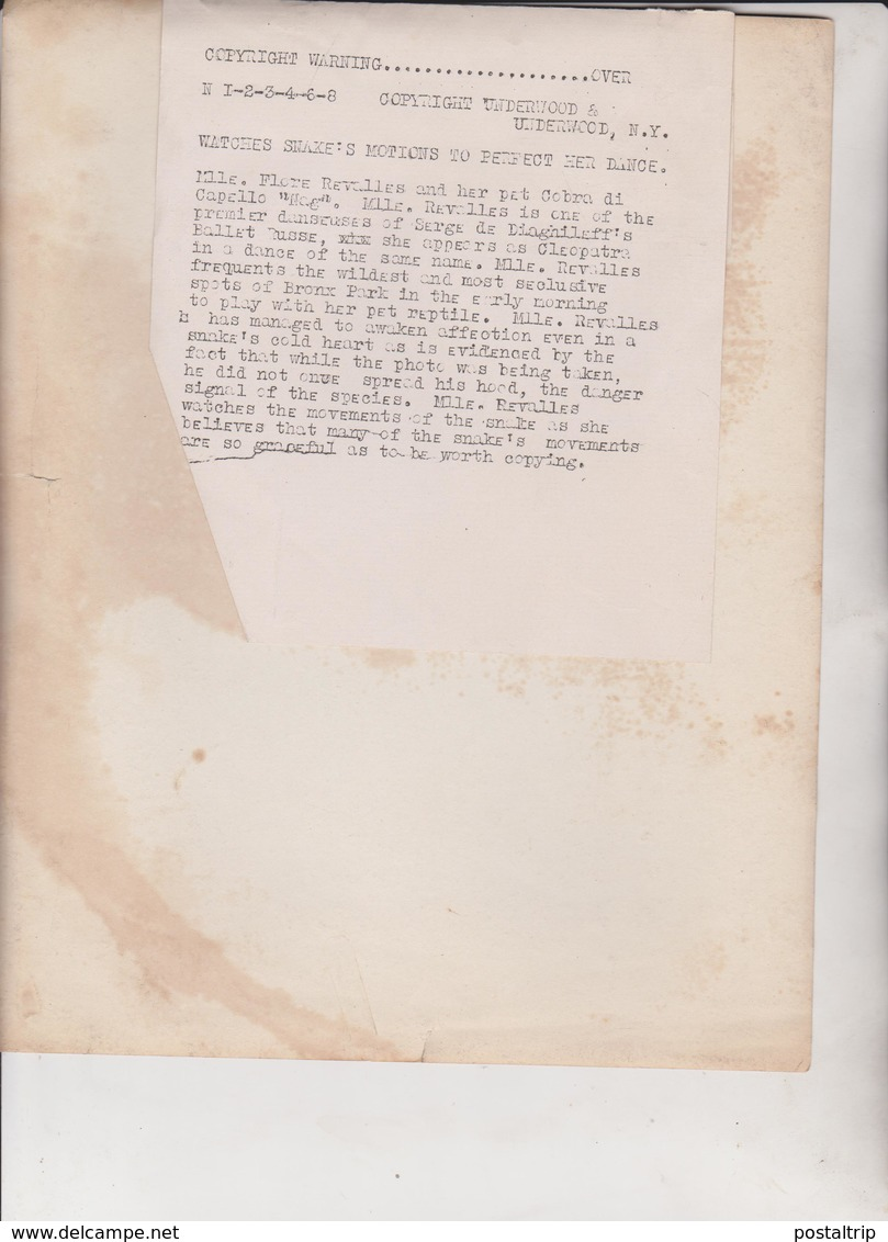 SNAKE'S MOTIONS FLORE REVALLES  PET COBRA DI CAPELLO NAG SERGE DIAGHILEFF USA 25 * 20  CM Fonds Victor FORBIN 1864-1947 - Personalidades Famosas