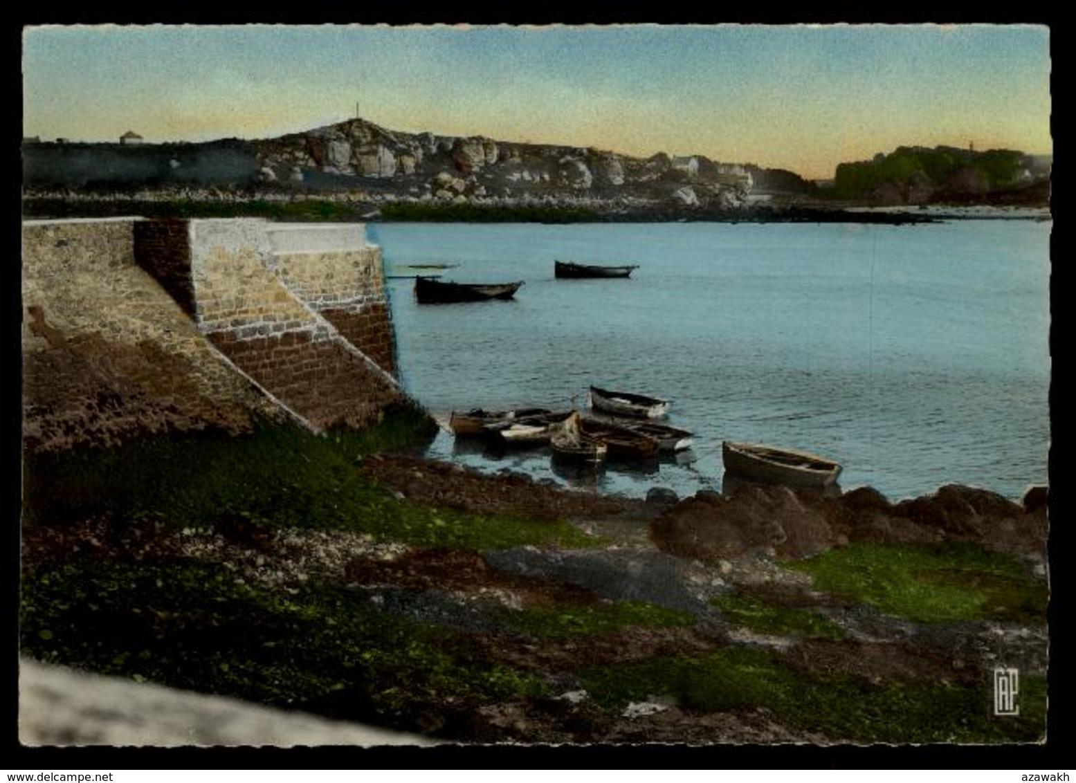 29 - Ploudalmézeau - Un Coin Du Port Et La Calvaire #10321 - Ploudalmézeau