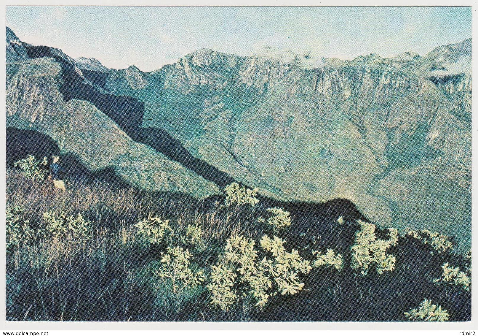 1631/ MT. MULANJE. View From Thuchila Plateau, Malawi. - Non écrite. Unused. No Escrita. Non Scritta. Ungelaufen. - Malawi