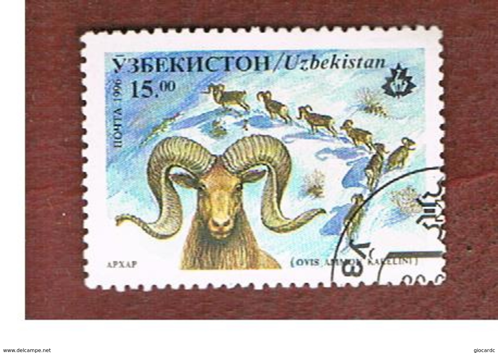 UZBEKISTAN   - SG 111   - 1996 ANIMALS: TIAN SHAN ARGALI   -   USED - Uzbekistan