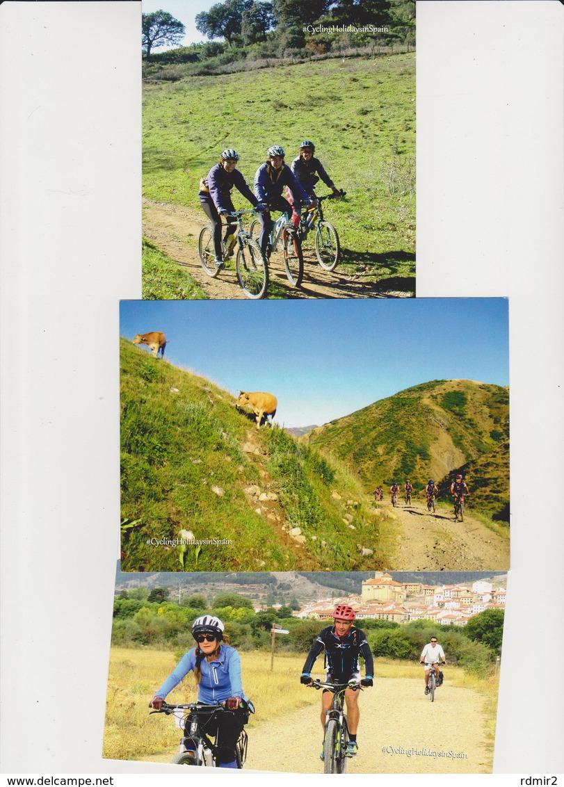 1655/ MOUNTAIN BIKE. 3 Postcards / 3 Cartes / 3 Postales / 3 Cartoline.- Non écrites. Unused. No Escritas. Non Scritte. - Ciclismo