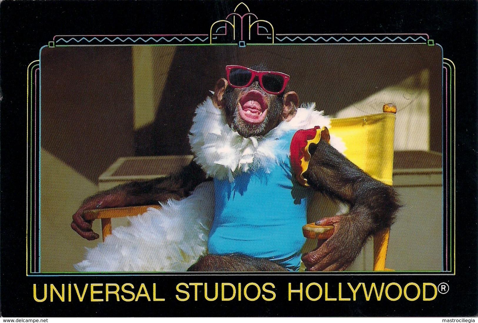 UNITED STATES AMERICA  CALIFORNIA  Universal Studios Hollywood  Monkey - Scimmie