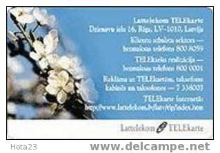 Latvia-Spring Flowers - Lettonie