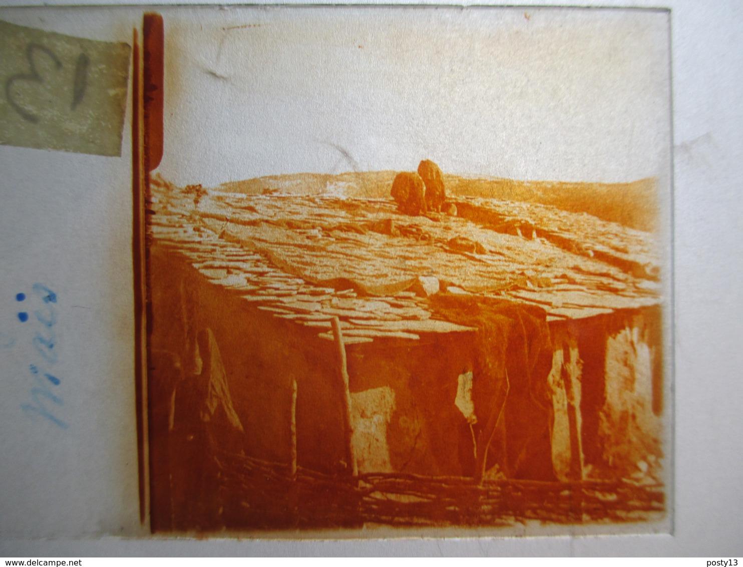 """GRECE -   LIVADIA   - """" Séchage Du Maïs """" - Rare Plaque De Verre Stéréoscopique  - 1917 - - Plaques De Verre"""