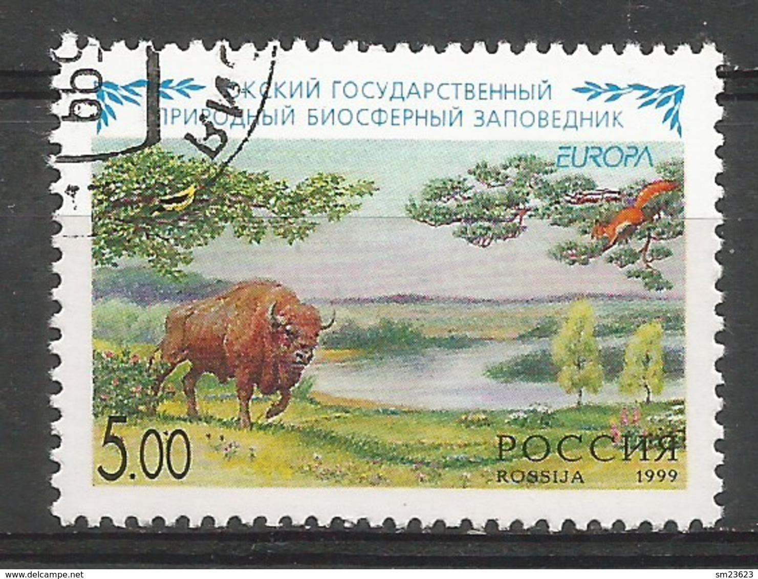 Russland 1999  Mi.Nr. 722 , EUROPA CEPT  Natur- Und Nationalparks -  Gestempelt / Fine Used / (o) - 1999