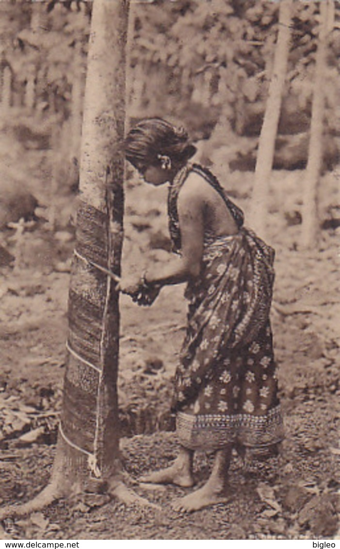 Ceylon - Tapping De Bark Of A Rubber-tree - 1924       (A-72-170710) - Sri Lanka (Ceylon)