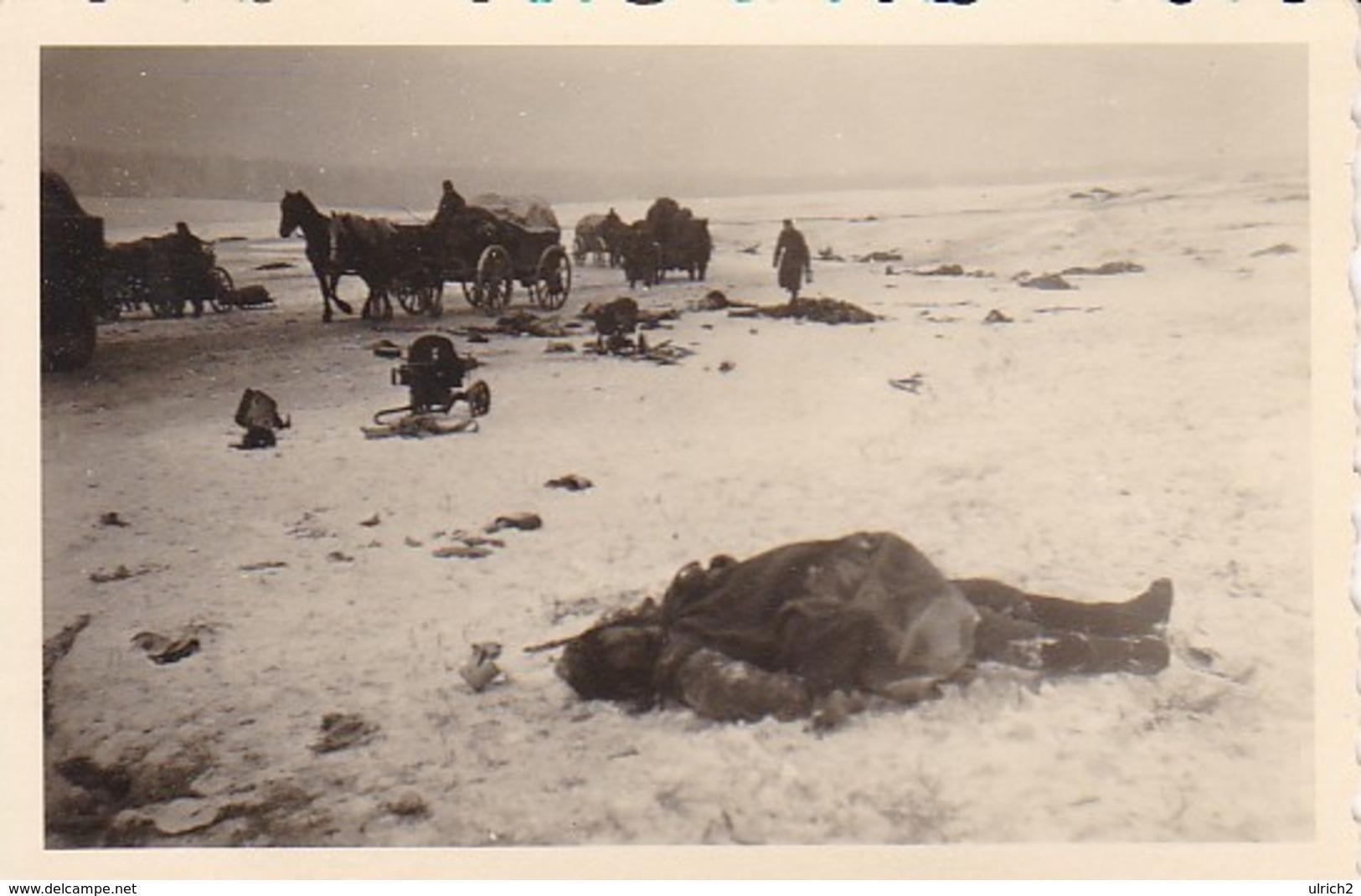 Foto Wehrmacht - Soldaten Beim Bergen Gefallener Russen- MG Pferde - Gefechtsfeld Iglewo (?) - 2. WK - 8,5*5,5cm (41201) - Krieg, Militär
