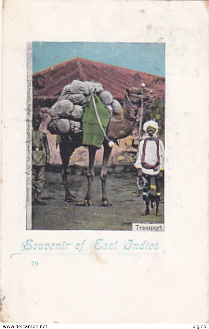 Souvenir Of East Indies - Transport - 1899    (A-73-170712) - Inde