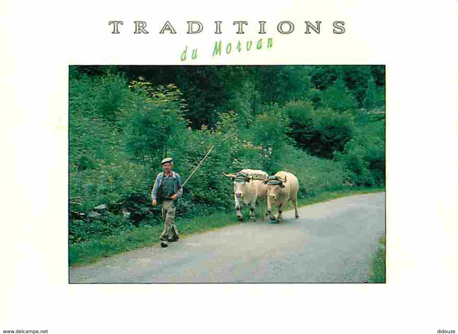 Animaux - Vaches - Traditions Du Morvan - Paysans - Voir Scans Recto-Verso - Vaches