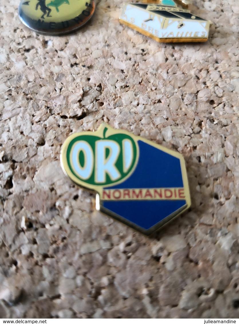 1 PINS EDF  ORI NORMANDIE - EDF GDF