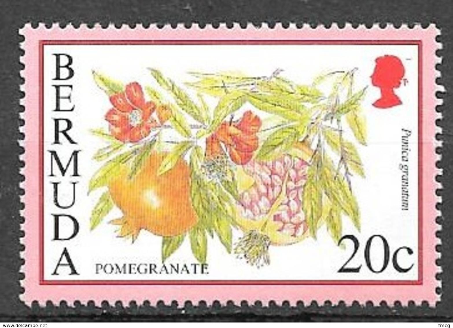 1994 20 Cents Pomegranate, Mint Never Hinged - Bermuda