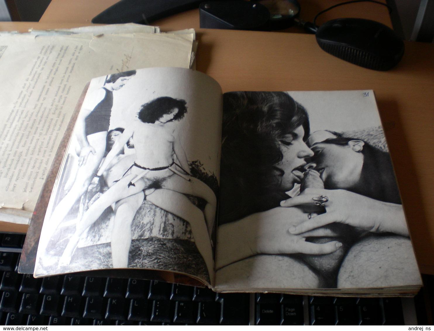 Pleasure Porno 93 Pages - Scandinavian Languages