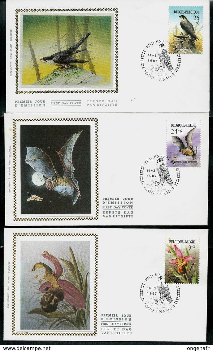 FDC Soie Des N° 2244/46  Protection Nature  -  Obl. Namur  Philexrail  14/03/1987 - 1985-.. Vogels (Buzin)