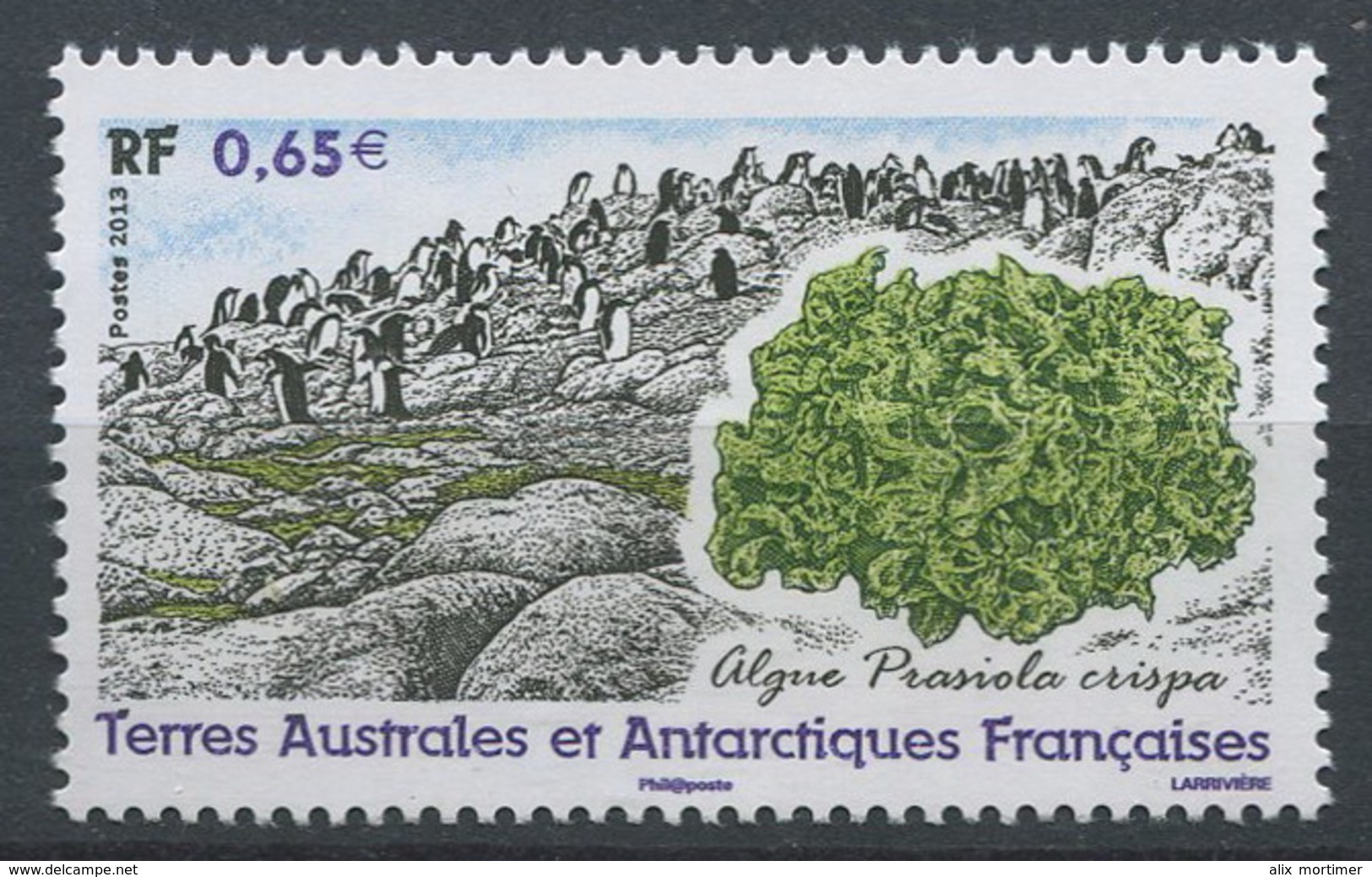 TAAF 2013 - N° 648 - Algue Prasiola Crispa - Neuf -** - Franse Zuidelijke En Antarctische Gebieden (TAAF)