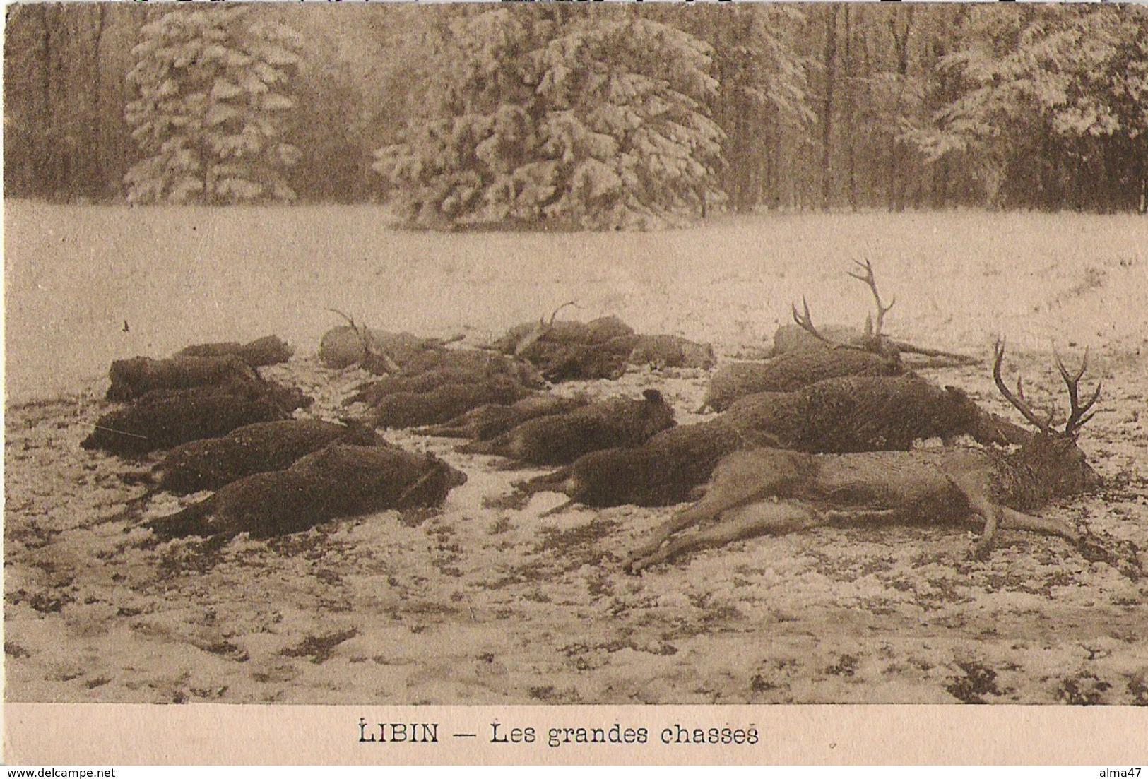 Libin - Les Grandes Chasses - écrite - Photo Duchêne - Libin