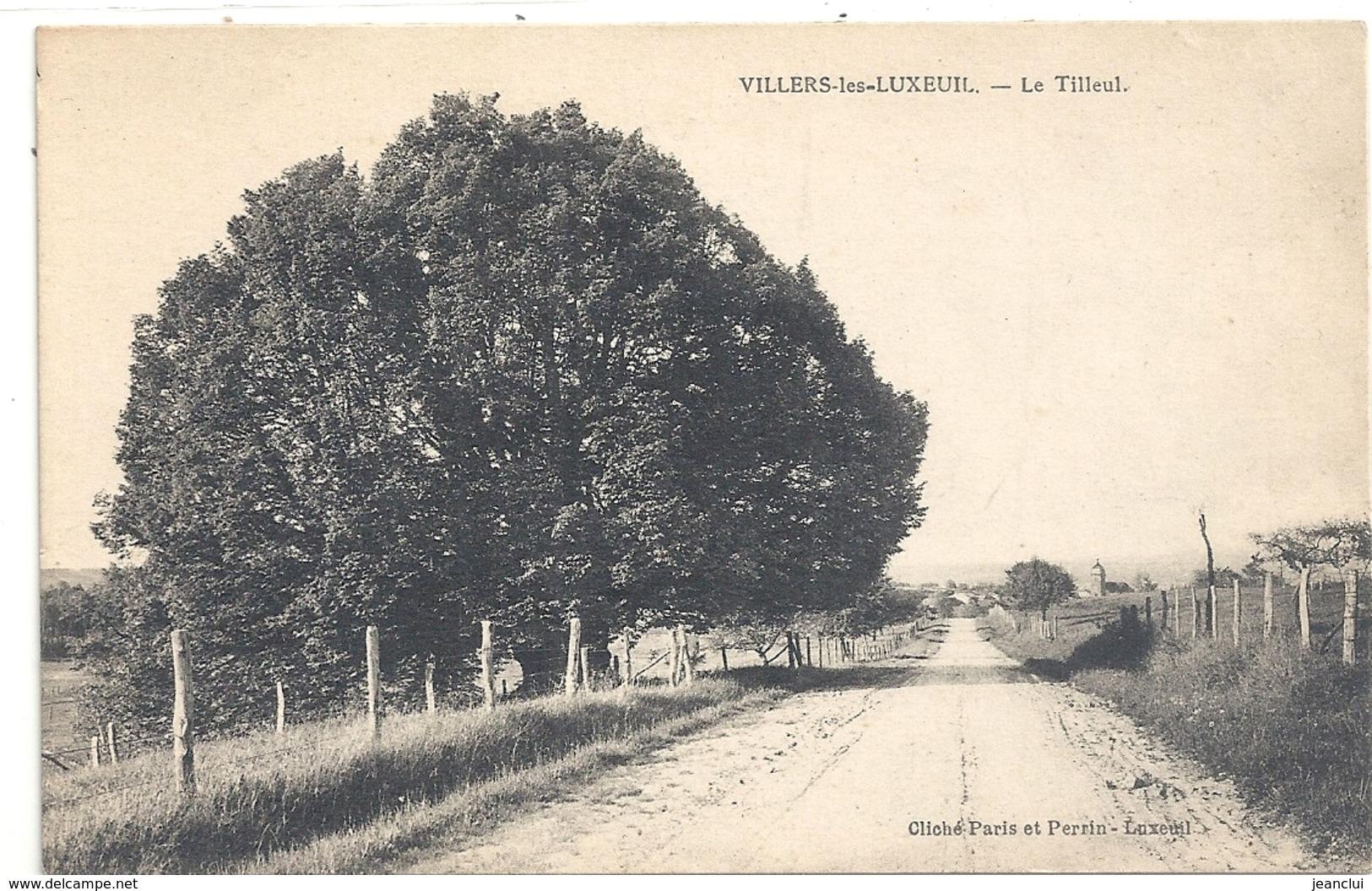 VILLERS-LES-LUXEUIL . LE TILLEUIL . CARTE NON ECRITE - France