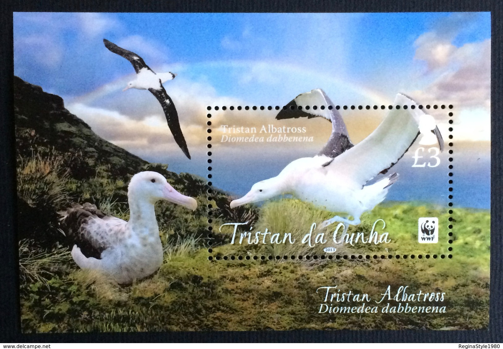 Tristan Da Cunha 2013; WWF Animals & Fauna; Birds Albatross MNH** VF; - Collections, Lots & Series