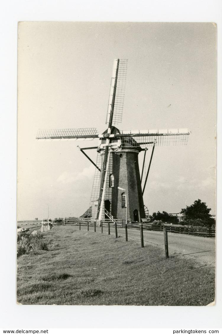 D059 - Rijpwetering 12 Kantige Stenengrondzeiler Molen Lijker 1 - Molen - Moulin - Mill - Mühle - Nederland