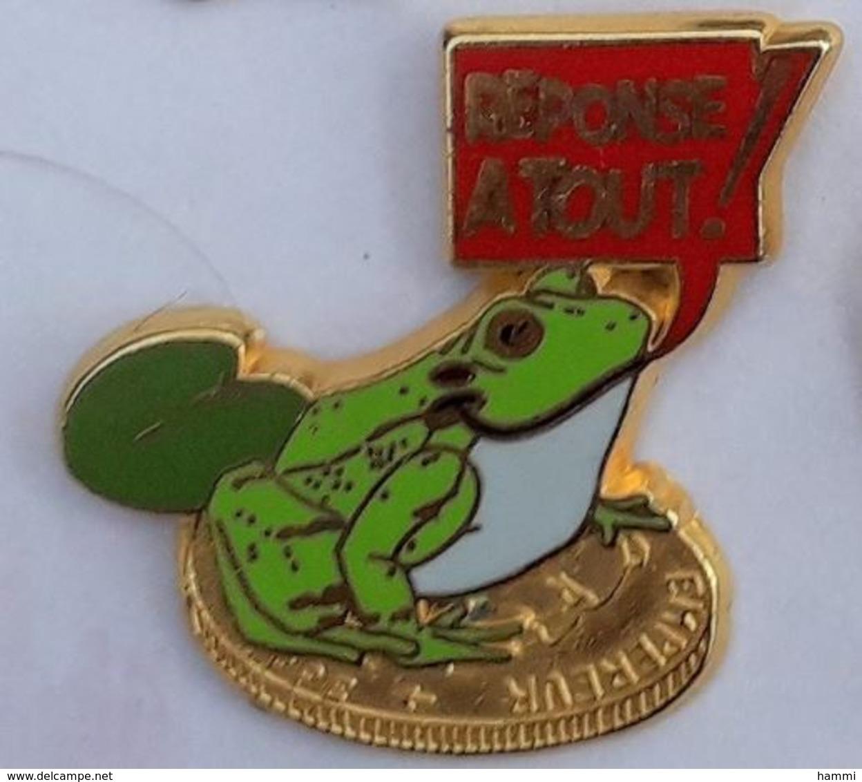 AN71 Pin's Grenouille Frog Reponse à Tout Signé Ballard Media Journal Presse Achat Immediat - Animali