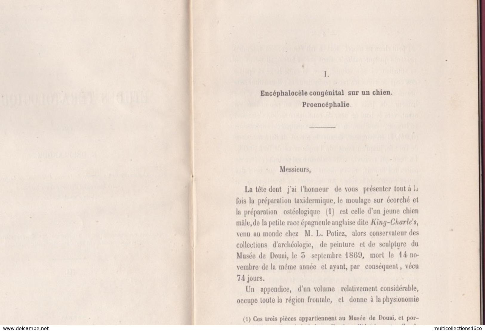 260519A Livre ETUDES TERATOLOGIQUES Autographe E DELPLANQUE 1875 Médecine Vétérinaire Malformation Chien Agneau - Livres Dédicacés